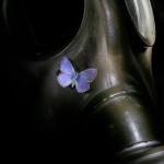 Schmetterling auf Gasmaske - Abstrakt