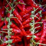 Gemüsestand - Chili