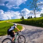 Schwarzwald, kurvige, steile Strasse mit Radfahrer, Biker